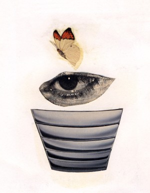 Pot-Eye-Fly, 1996