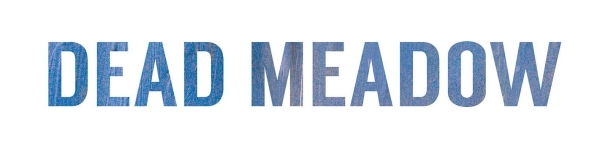 dead meadow_the nothing they need_album logo_sm